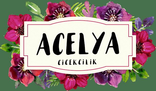Bafra Açelya Çiçekçilik